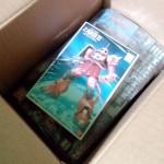 got-a-package-22-inside-624x1024